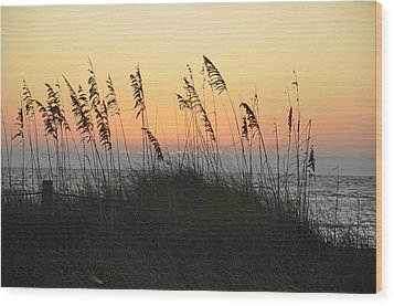 Grassy Sunset Wood Print