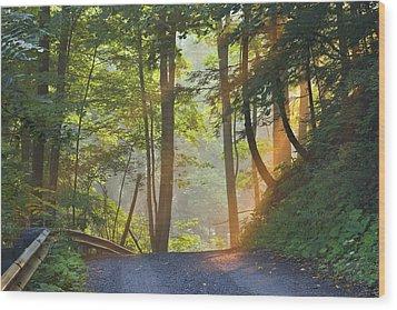 Gravel Road At Sunrise, Pelham, Ontario Wood Print by Darwin Wiggett