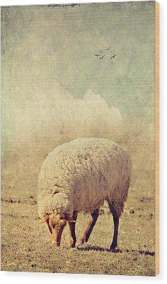 Grazing Sheep Wood Print by Kathy Jennings