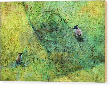 Grazing The Pollock Field Wood Print by Jean Moore