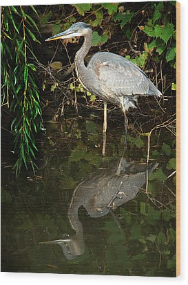Wood Print featuring the mixed media Great Blue Heron 1 by Bruce Ritchie
