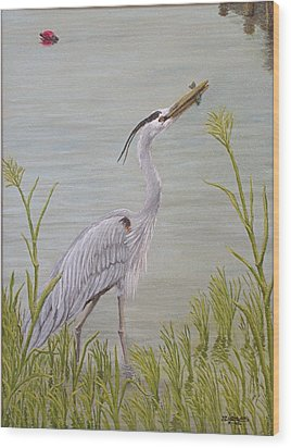 Great Blue Heron Wood Print by Jim Ziemer