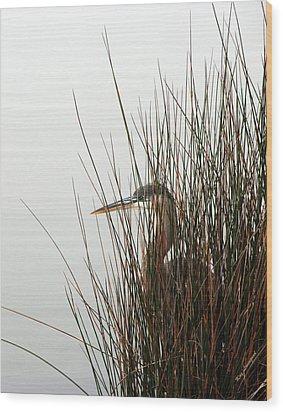 Great Blue Heron Wood Print by Kay Lovingood