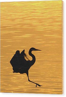 Wood Print featuring the photograph Great Blue Heron Landing In Golden Light by Randall Branham