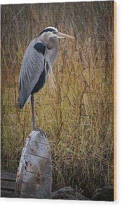 Great Blue Heron On Spool Wood Print by Debra and Dave Vanderlaan