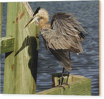 Great Blue Heron On The Block Wood Print by Paulette Thomas