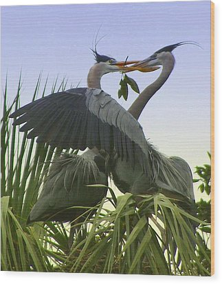 Wood Print featuring the photograph Great Blue Herons by Myrna Bradshaw