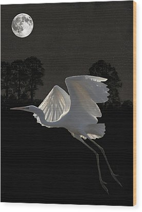 Great Egret In Flight Wood Print by Eric Kempson