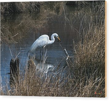 Great Egret With Fish Dmsb0034 Wood Print by Gerry Gantt