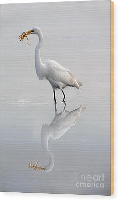 Wood Print featuring the photograph Great Egret With Lunch by Dan Friend