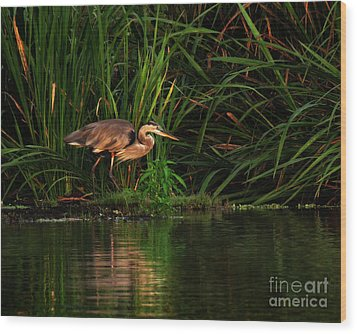 Wood Print featuring the photograph Great Heron by Deborah Smith