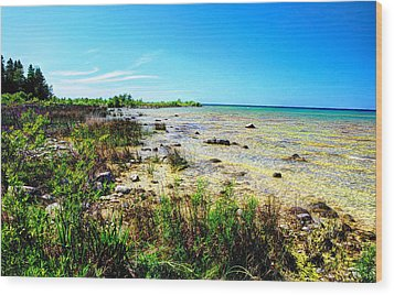 Wood Print featuring the photograph Great Lakes Summer Shoreline by Janice Adomeit