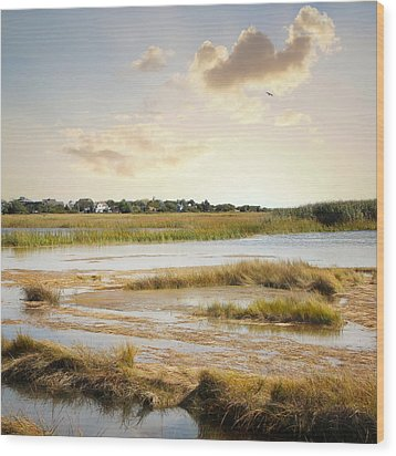 Wood Print featuring the photograph Great Marsh Ll by Karen Lynch