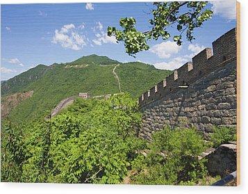 Great Wall At Mutianyu Wood Print by Bridget Coila
