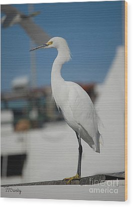 Great White Egret 2 Wood Print