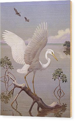 Great White Heron, White Morph Of Great Wood Print by Walter A. Weber