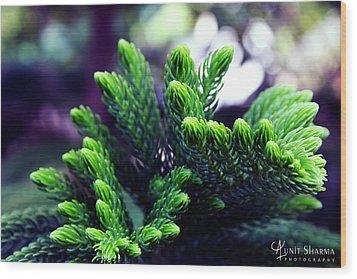Green Wood Print by Aunit Sharma