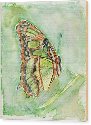 Green Butterfly Wood Print by Linda Pope