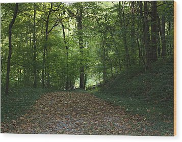 Green Cemetery Road Wood Print by James Collier