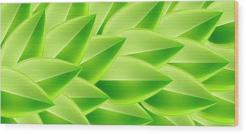 Green Feathers, Full Frame Wood Print by Ralf Hiemisch