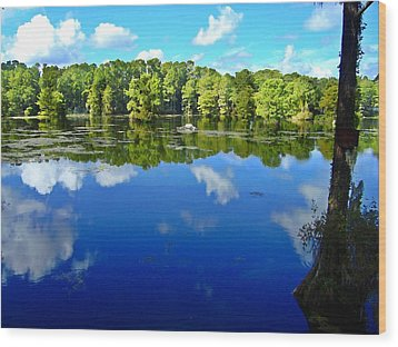 Green Field Lake Wood Print