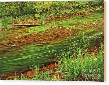 Green Forest River Wood Print by Elena Elisseeva