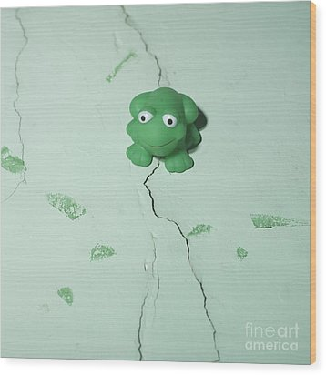 Green Frog Wood Print by Bernard Jaubert