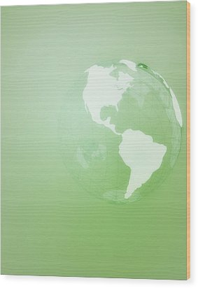 Green Globe Of The Americas Wood Print by Jason Reed