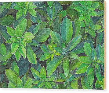 Green Gold Wood Print by Yvonne Scott