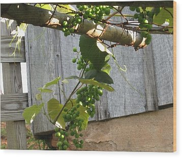 Green Grapes On Rusted Arbor Wood Print