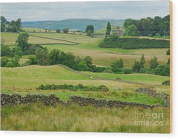 Green Hills Of Galloway Wood Print by John Kelly