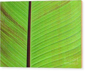 Green Lines Wood Print by Sabrina L Ryan