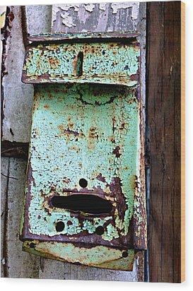 Green Mailbox Wood Print by Jo Sheehan