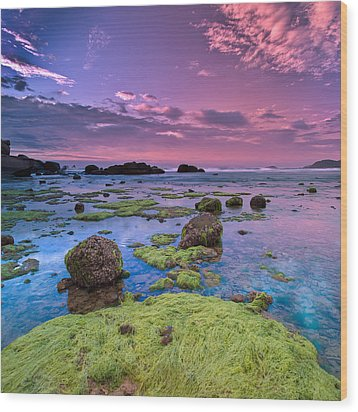 Green Moss Covered Rocks At Sunrise Wood Print by AndreLuu