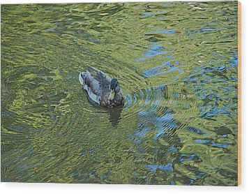 Wood Print featuring the photograph Green Pool by Joseph Yarbrough
