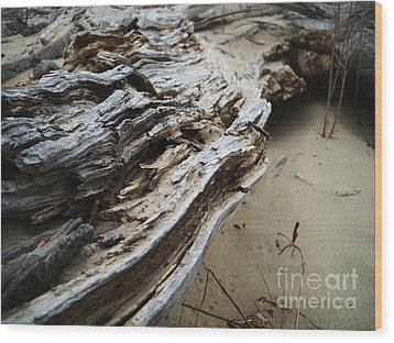 Green River 6 Wood Print by Kelsey Anderson