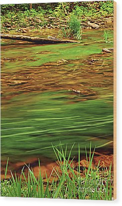 Green River Wood Print by Elena Elisseeva