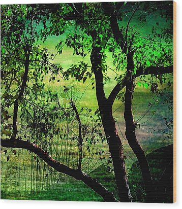 Green Wood Print by Shirley Sirois
