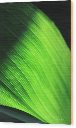 Green Wave Wood Print