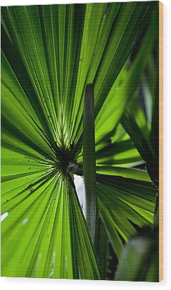 Wood Print featuring the photograph Greenery by Carole Hinding