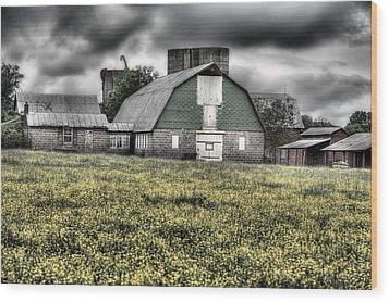 Grey Scale Wood Print by JC Findley
