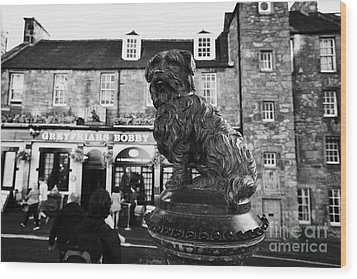 Greyfriars Bobby Statue In Front Of The Bar Candlemaker Row Edinburgh Wood Print by Joe Fox