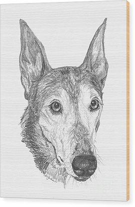 Greyhound Wood Print by Deb Gardner