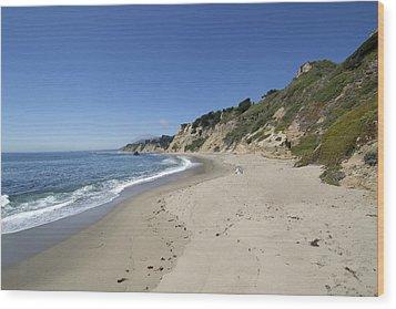 Greyhound Rock State Beach Panorama - Santa Cruz - California Wood Print by Brendan Reals
