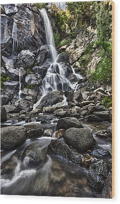 Grizzly Falls Wood Print by A A