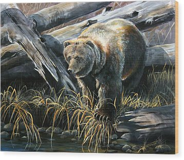 Grizzly Pond Wood Print by Scott Thompson