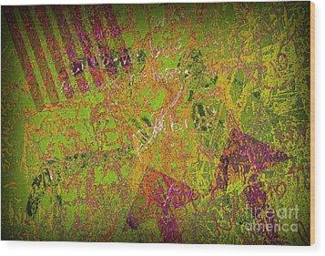 Grunge Background 4 Wood Print by Carlos Caetano