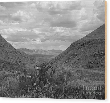 Guadalupe Mountain View Wood Print