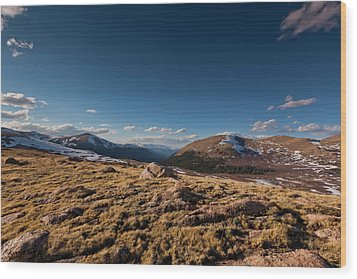 Guanella Pass Colorado Wood Print by Richard Steinberger