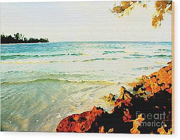 Gulf Shores Wood Print by Joan McArthur